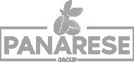 Panarese Group Alliance Logo