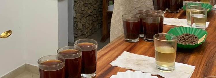 PanareseGroup-news-tasting-coffee-sca